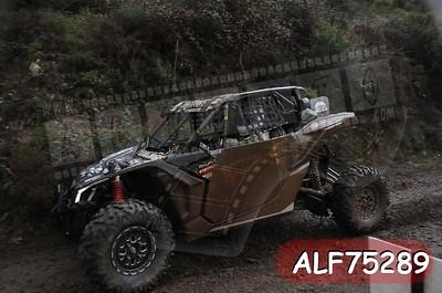 ALF75289