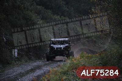 ALF75284