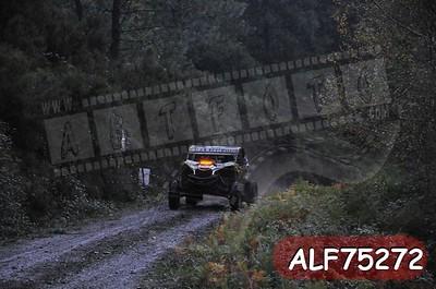 ALF75272
