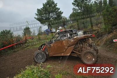 ALF75292