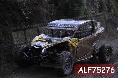 ALF75276
