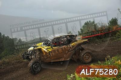 ALF75280