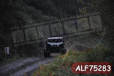 ALF75283