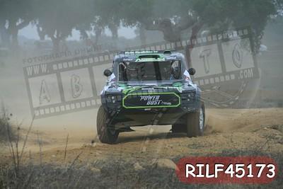RILF45173