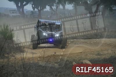 RILF45165