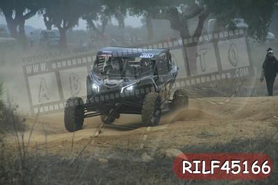RILF45166