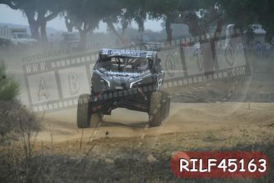 RILF45163