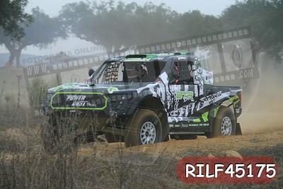 RILF45175