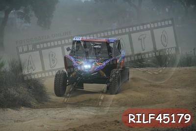 RILF45179