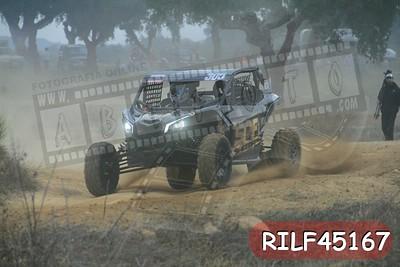 RILF45167