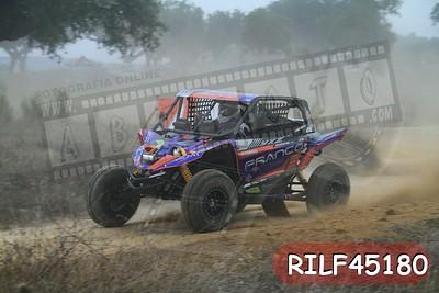 RILF45180