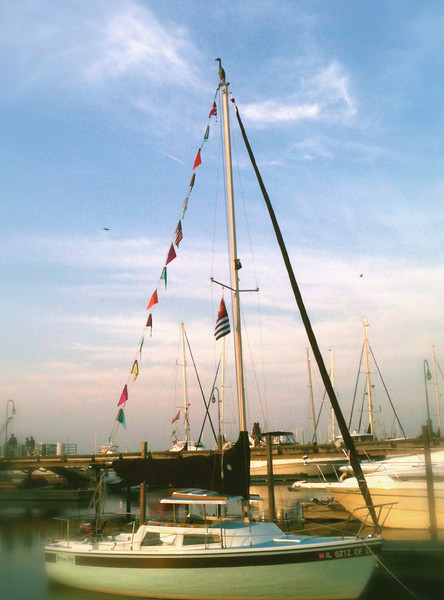 A perfect perch...Racine Harbor, Racine, WI - Kristin Harmon