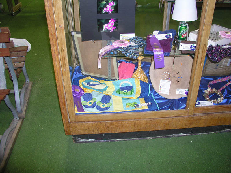Quilt Competition -- Katy Fuerst Blue (1st Place)  .... AND ...  Purple (Class Champion) ... AND AND .... Purple (Grand Champion)