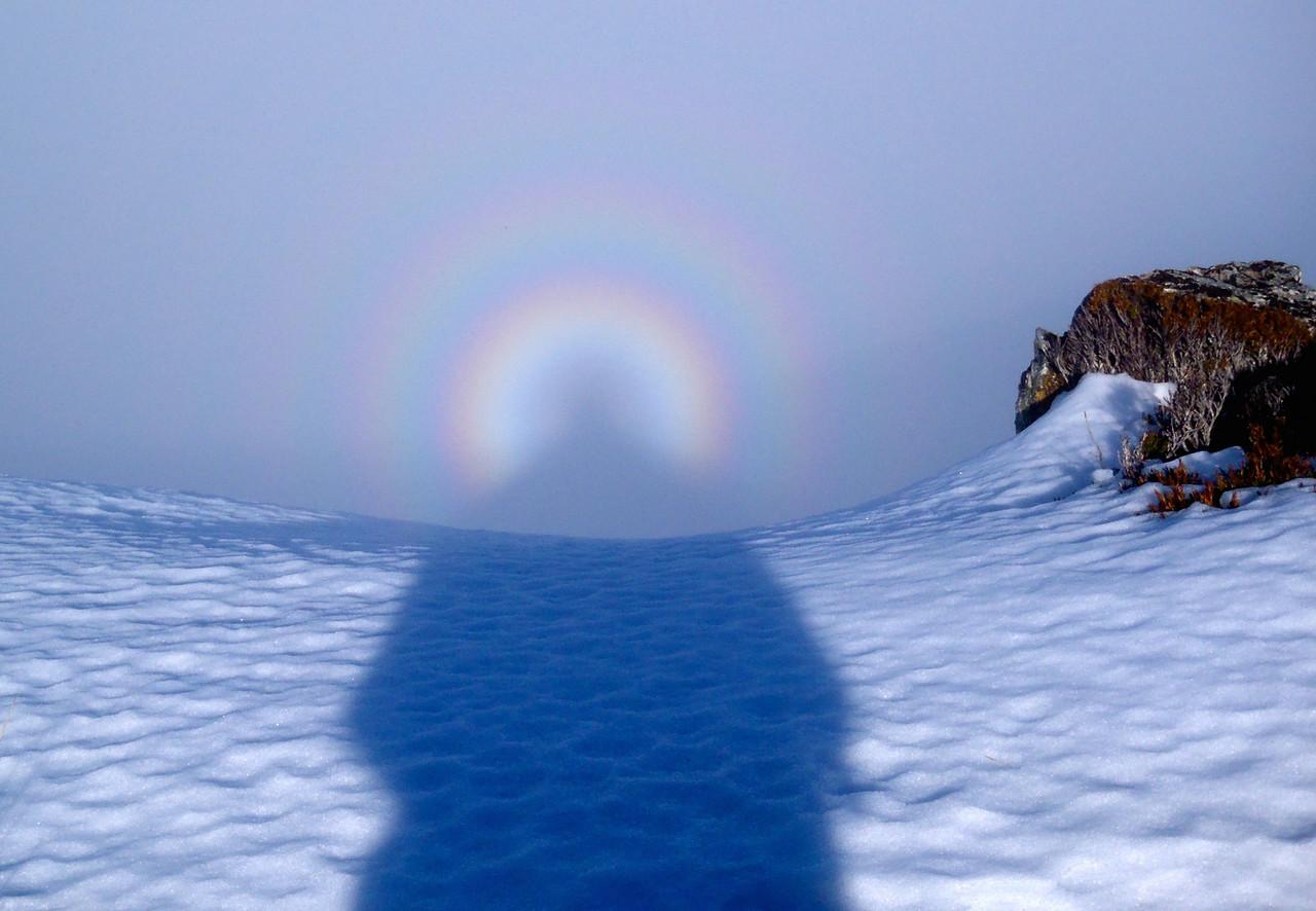 ABL-TTC-Lynne Pomare-Brocken Spectre angel, Field Peak, 31 July 2013