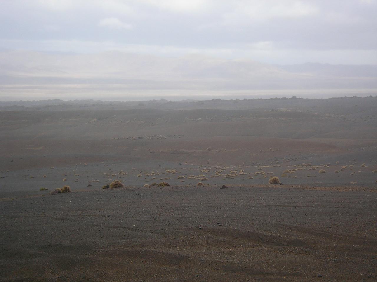 OLS-TTC-JennyMason-Rangipo Desert