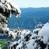 OLS-TTC-Ogilvie-Upper Hutt from Climie