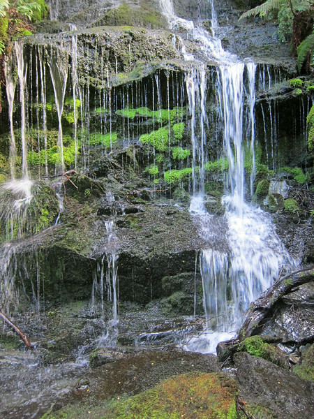 OLS-TTC-Trish Gardiner-Smith Waterfall Aspiring