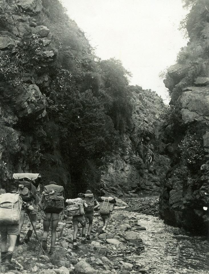 HIS-TTC-PWhiteford-Hodder Gorge 1960