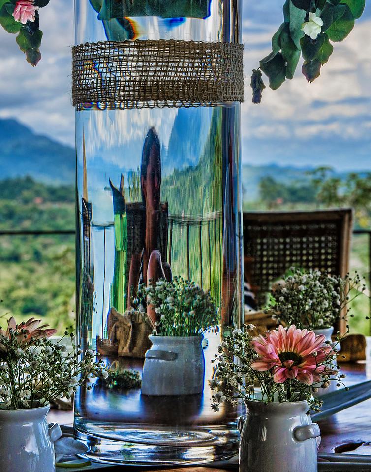 6. Looking Through The Flower Vase