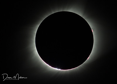 Bailey's Beads, Solar Flares at Totality, Total Solar Eclipse of the Sun, Leasburg, Missouri, August 21, 2017