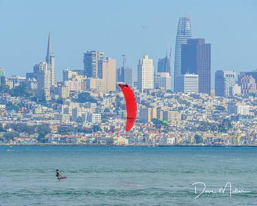 San Francisco Sail Boarder