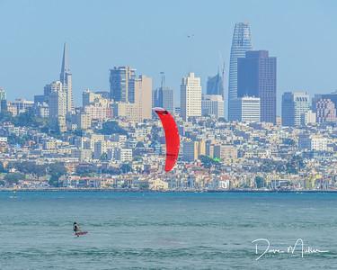 San Francisco Sail Boarder