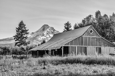 Mt Hood from Parkdale, Oregon