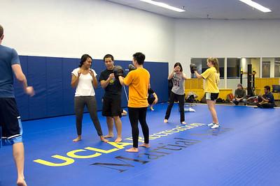 Martial Arts 1/18/17