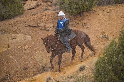 Pinon Mesa 2009
