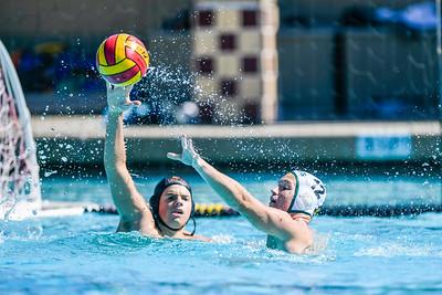 M-A Bears Boys Varsity Water Polo vs. Palo Alto.