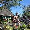 Cultural dance display in Rarotonga. Credit: New Zealand Ministry of Foreign Affairs and Trade