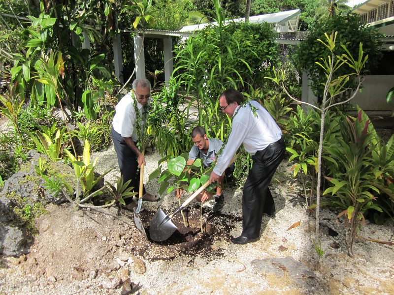 Tree planting at Matavai to mark the announcement of the redevelopment. Credit Ministry of Foreign Affairs and Trade