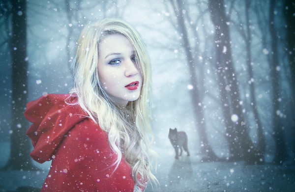 The red riding wold
