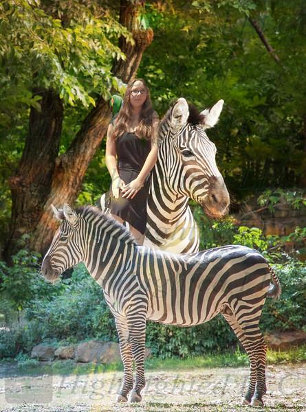 Angelleah and Zebras