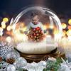 8x10 Twinkling Snow Globe
