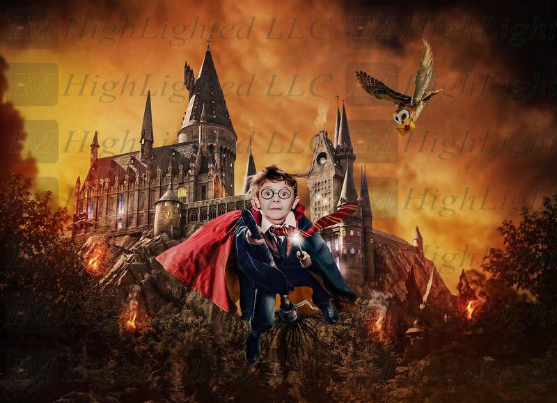 Dresden Potter