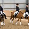 Tandem horses