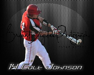 Colten Johnson Baseball Poster
