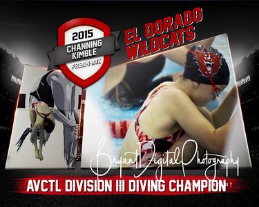 2015 Lady Wildcat Swim Composites