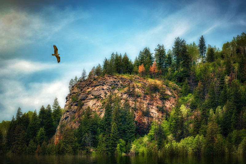 Osprey Bluffs
