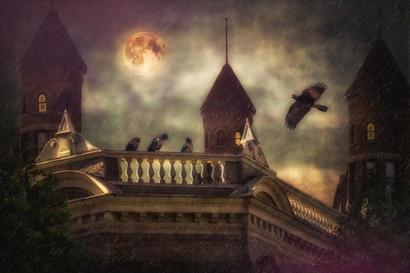 Castle Crow
