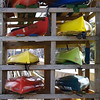 Canoes' Colorful Cousins