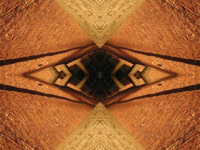 FAN1-Towards the abyss