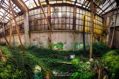 GLO17-Abandonment Veranda