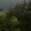 Summer Storm 1