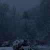 Snowy Evening 1