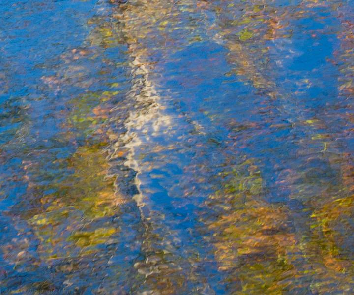 School of Monet 3