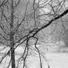 fallen snow (au revoir simone)<br /> Berlin, 2007