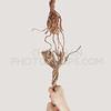 Sin rope