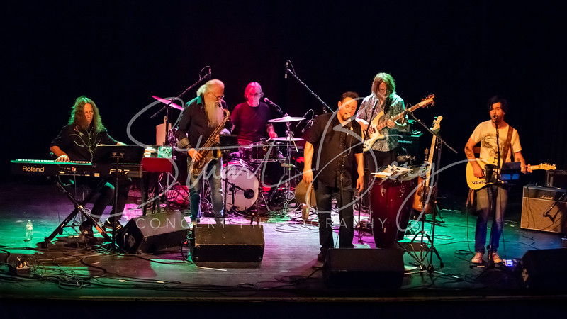Paper Sun   <br /> July 6, 2018  <br /> Bearsville Theater  <br /> Bearsville, NY  <br />  ©Stuart M Berg   <br /> <br /> Paper Sun - The Music of Traffic  <br /> Scott Petito - Bass, Director  <br /> Randy Ciarlante - Drums, Vocals  <br /> Bruce Katz - Keyboards   <br /> Bill Harris - Woodwinds   <br /> Joey Eppard - Vocals, Percussion, Guitar   <br /> Andy Stack - Guitar, Vocals